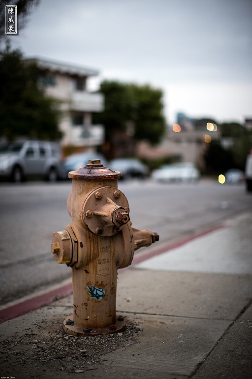 IMAGE: http://julianchen.smugmug.com/Photography/Abstract-Hydrant/i-G34J6Lw/0/XL/20120610-Canon-EOS-5D-Mark-III-XL.jpg