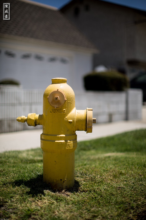 IMAGE: http://julianchen.smugmug.com/Photography/Abstract-Hydrant/i-SHM6QK4/0/XL/20120618-Canon-EOS-5D-Mark-III-XL.jpg