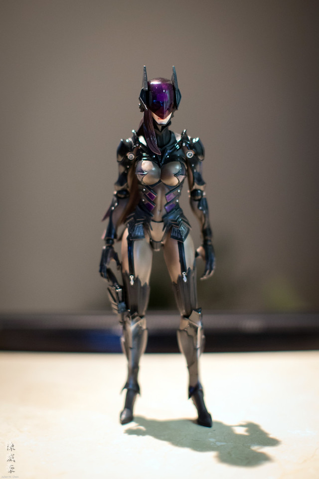 IMAGE: https://julianchen.smugmug.com/Misc/Collectibles/Catwoman/i-6rKKg8g/0/X2/20151227-Canon%20EOS-1D%20X-1DX_4980-X2.jpg