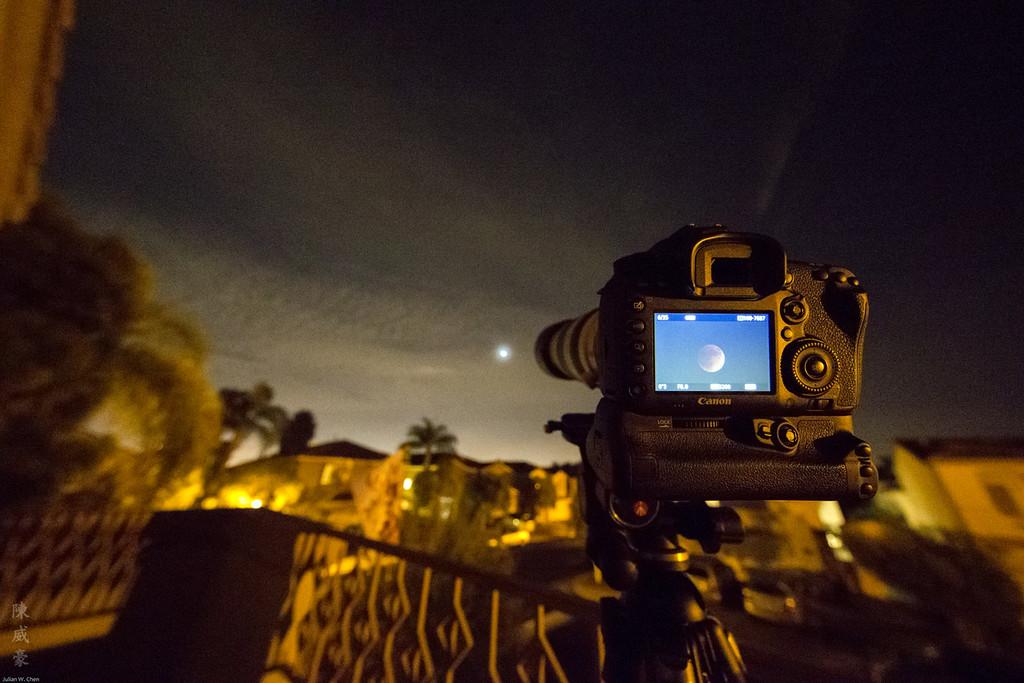 IMAGE: https://julianchen.smugmug.com/Misc/Lens/Canon-1124L/i-kdtBGrN/0/XL/20150927-Canon%20EOS-1D%20X-1DX_1892-XL.jpg