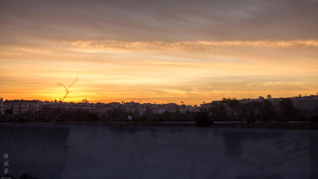 IMAGE: https://julianchen.smugmug.com/Misc/Lens/Canon-50L/i-p3vzmZq/0/XL/20151209-Canon%20EOS-1D%20X-1DX_4610-XL.jpg